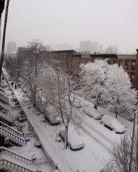 Snow_street